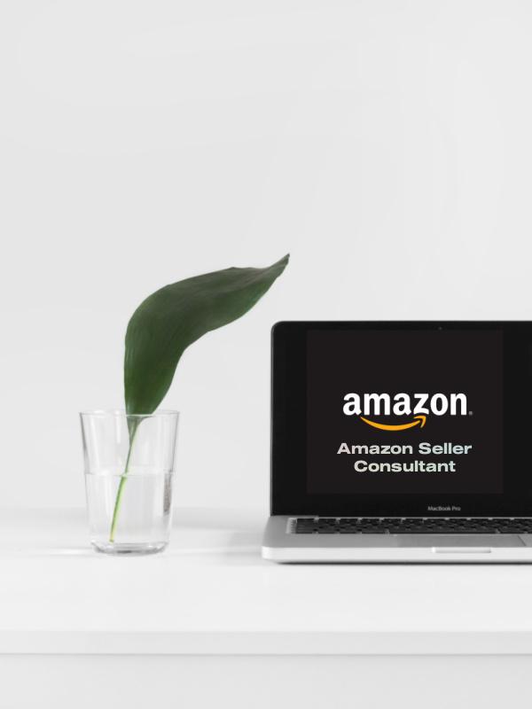 Amazon Seller Consultant